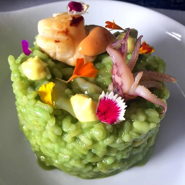 Resultado de imagen de foto del plancton en alta cocina